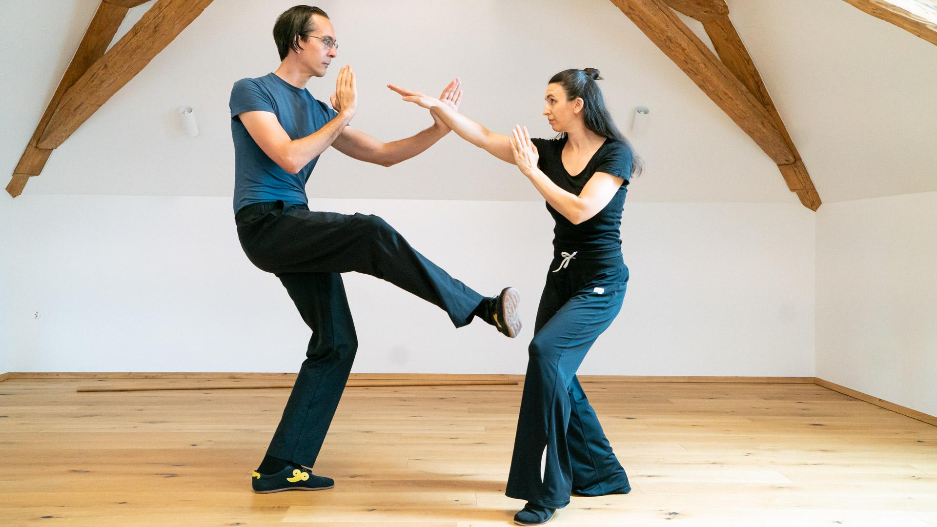 Wing Chun Kung Fu Kurs Wien Zentrum