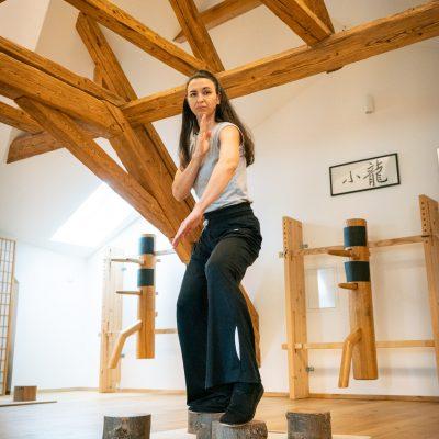 Wing Chun Kung Fu Kurs Zentrum Shui long Wien